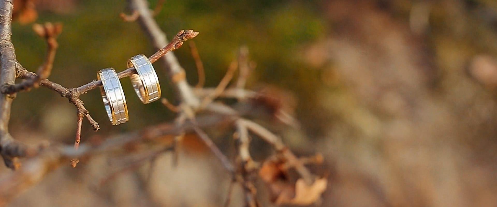 Őszi esküvői dekoráció és gyűrűk